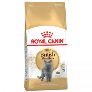 FBN BRITISH SHORTHAIR 2kg